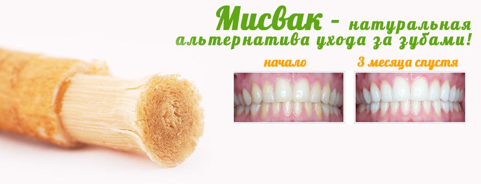 Корень которым чистят зубы